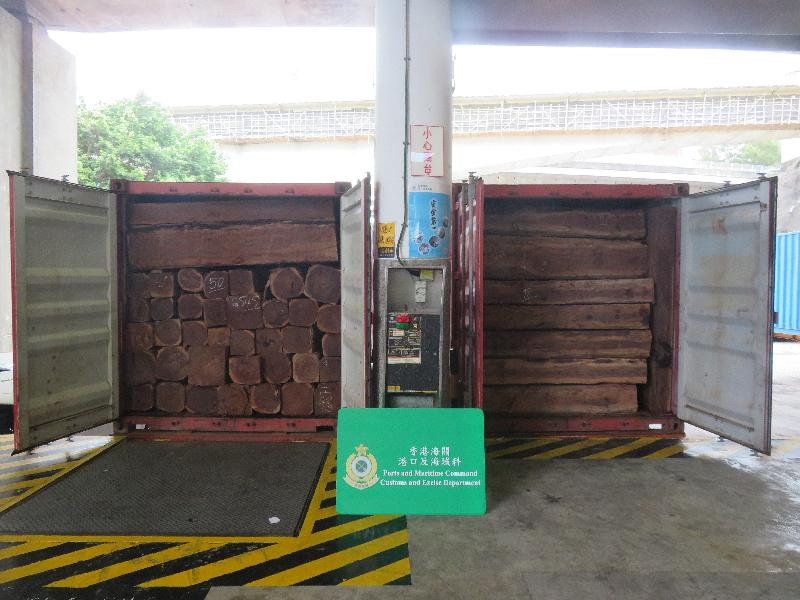 211 tonnes of rare and endangered timber were seized in Hong Kong in early May. Photo: the Hong Kong Special Administrative Region Customs and Excise Department.