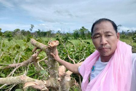 Digital news publisher Yuon Chhiv with the remains of his cashew orchard, which was razed by authorities in early September.